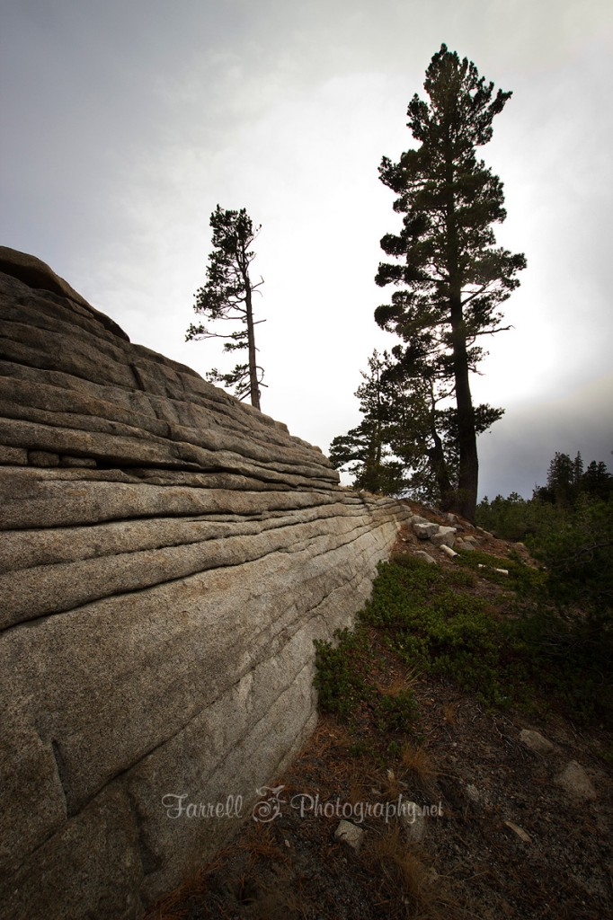 farrell photography pine rock formation high sierra highway 88