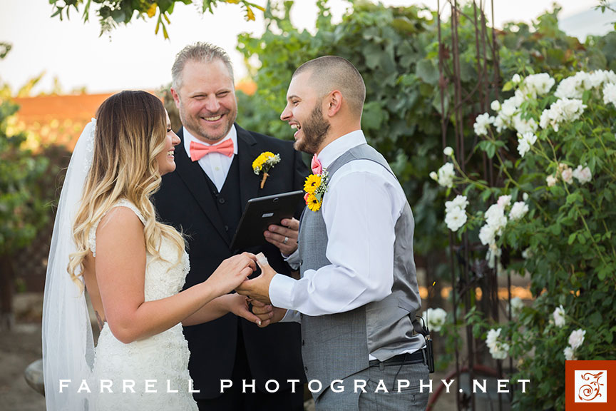 scribner-bend-vineyards-wedding-by-steven-farrell-of-farrell-photography-img_3575