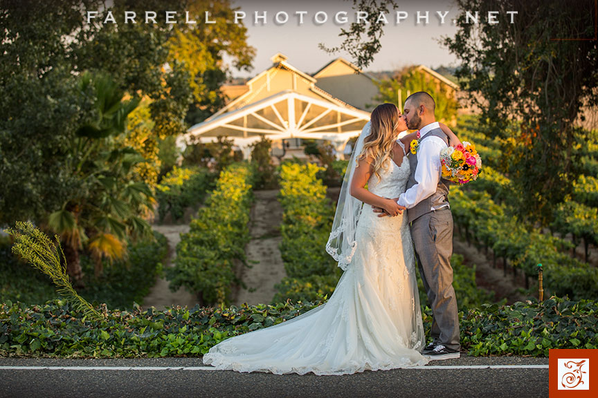 scribner-bend-vineyards-wedding-by-steven-farrell-of-farrell-photography-img_3733