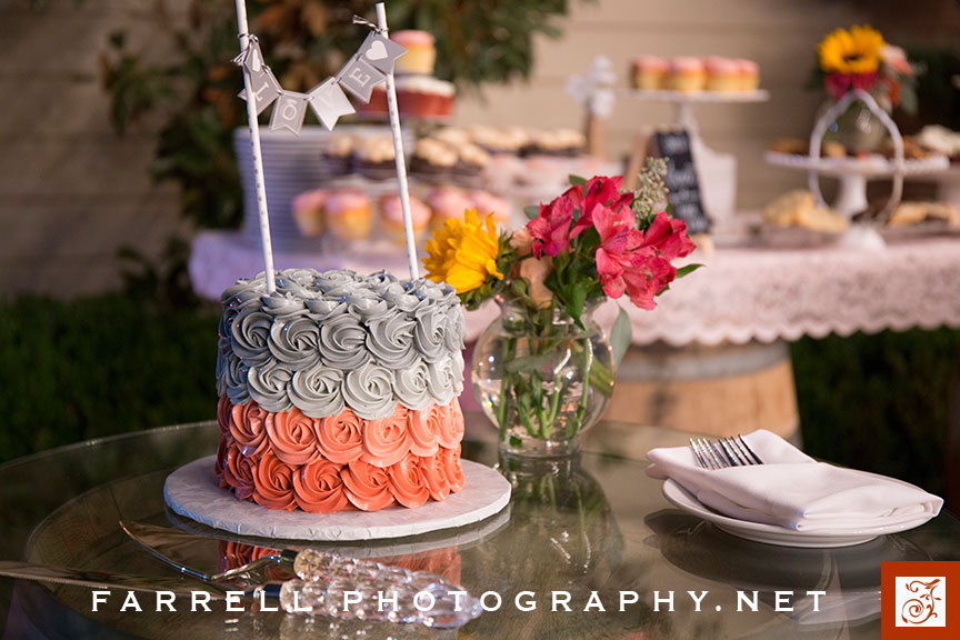 scribner-bend-vineyards-wedding-by-steven-farrell-of-farrell-photography-img_3890-instagram