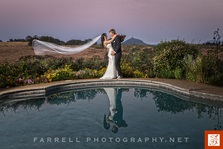 avio-wedding-at-avio-vineyards-by-steven-farrell-of-farrell-photogtraphy-img_6426a