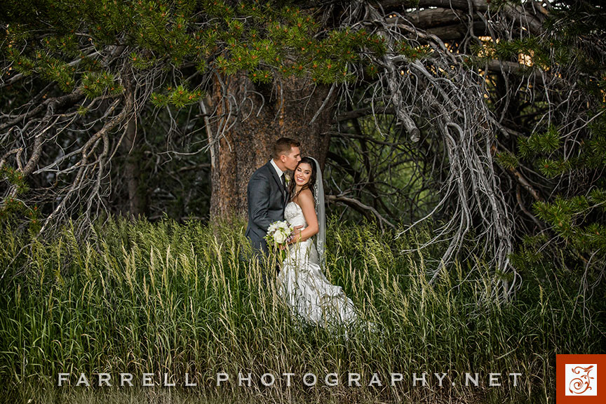 lake-tahoe-wedding-at-lajke-tahoe-golf-course-by-steven-farrell-of-farrell-photography-sierra-wedding-img_8638