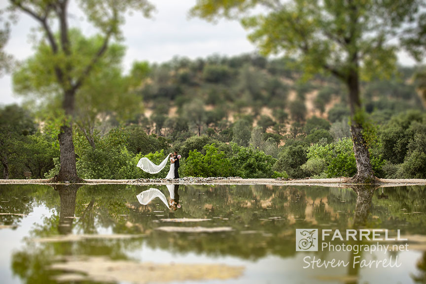 Willow-Creek-Events-Wedding-in-Browns-Valley-by-Steven-Farrell-of-Farrell-Photography-IMG_5511a