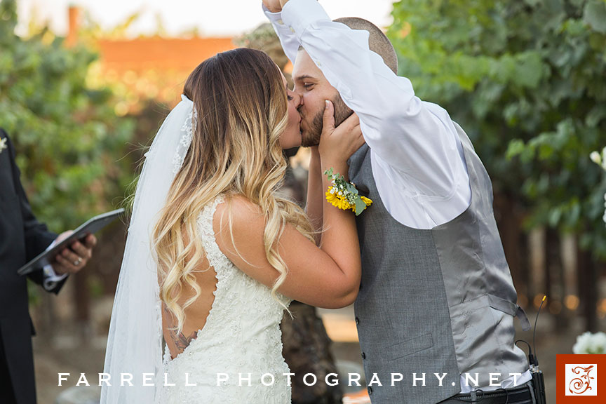scribner-bend-vineyards-wedding-by-steven-farrell-of-farrell-photography-img_3614