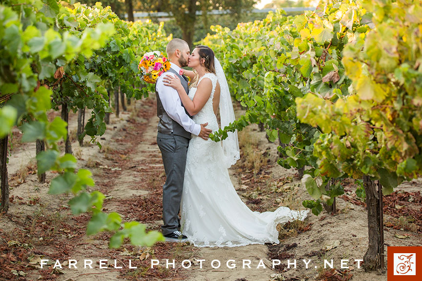 scribner-bend-vineyards-wedding-by-steven-farrell-of-farrell-photography-img_3688-instagram