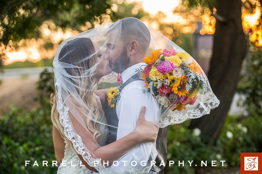 scribner-bend-vineyards-wedding-by-steven-farrell-of-farrell-photography-img_3851-instagram