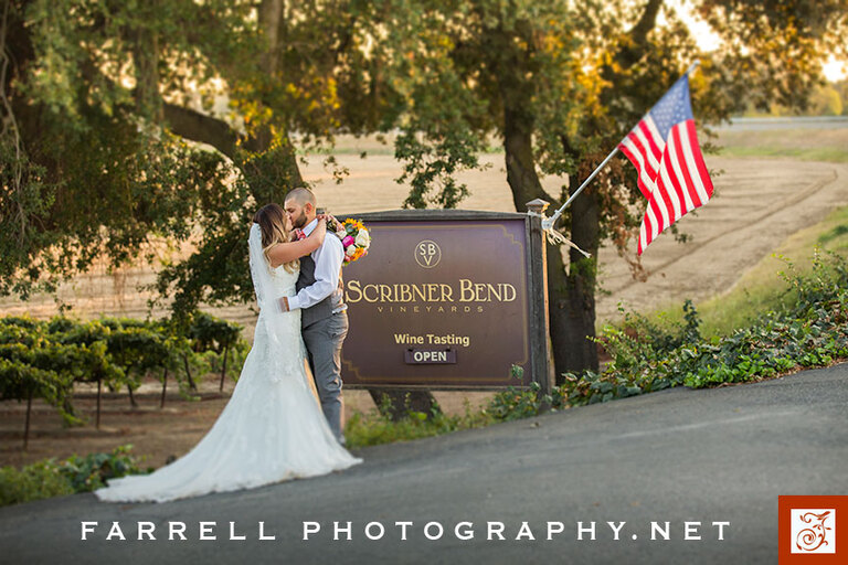 scribner-bend-vineyards-wedding-by-steven-farrell-of-farrell-photography-img_7324