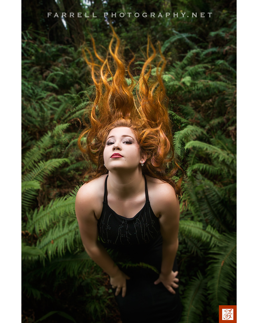 senior-portrait-ain-the-california-redwoods-by-steven-farrell-of-farrell-photography-net-img_9847a