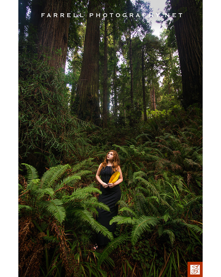 senior-portrait-ain-the-california-redwoods-with-red-hair-by-steven-farrell-of-farrell-photography-net-img_9835